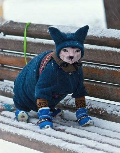 Cold outside?