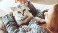 HELP! My Cat Won't Stop Biting My Feet at Night