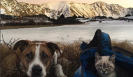 This Cat Guided a Lost and Injured Man through the Mountains