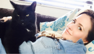 This Journalist Had To Leave Her Cat In A Conflict Zone, and How She Got Him Back Is Incredible