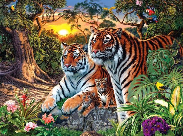 ¿Cuántos tigres hay?