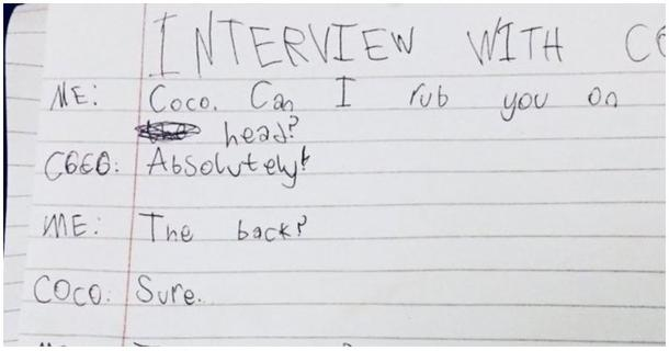 Interview with the cat