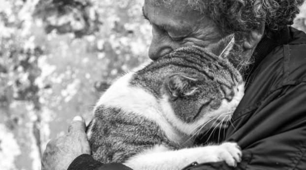 This series of photos of MEN with THEIR CATS will melt your heart