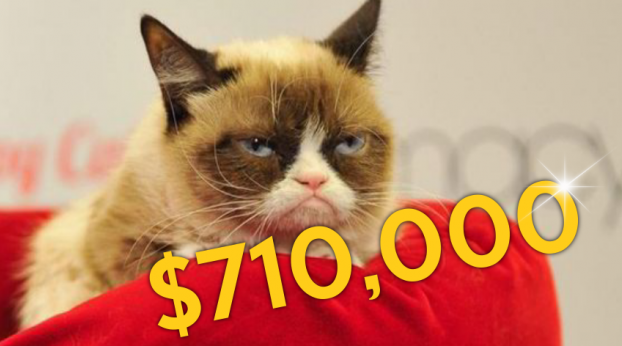 Grumpy Cat Was Just Awarded a Fortune in Court
