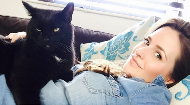 The Ridiculous Reason Why People Don't Adopt Black Cats Will Make You Lose Faith in Humanity